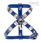 Chic and Stud Cobalto Harness