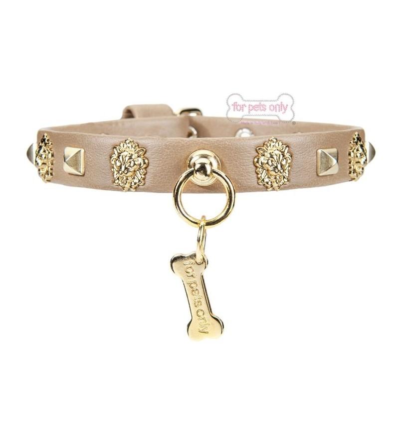 Golden Lion Camel Collar