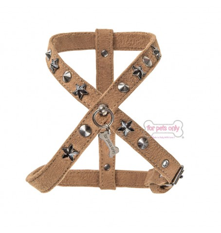 Hot Star Harness